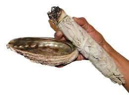 Huisreinigen-schelp1